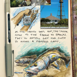 Gulfshore Life Sanibel Catch page 2 journal