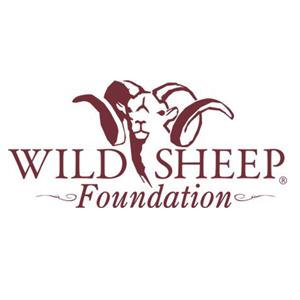 Wild-sheep-300x300